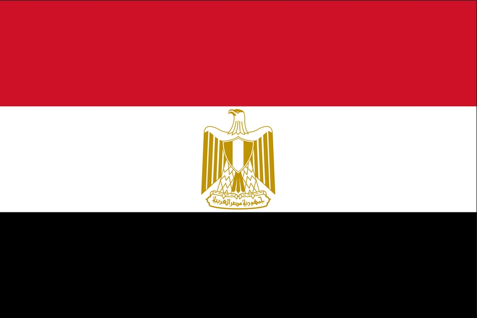 Contact Information Address High Elections Committee Of Egypt 117 Abdel Aziz Fahmy Street New Cairo Governorate Phone 20 24179880